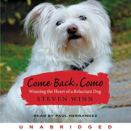 Come Back, Como  cover art