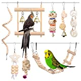 Kuoser Pack de 8 juguetes para pájaros, loros, jaulas, columpio con campanas, para mascotas, perca, columpio, periquitos, periquitos, conures, amor, pájaros, ninfas, pinzones.