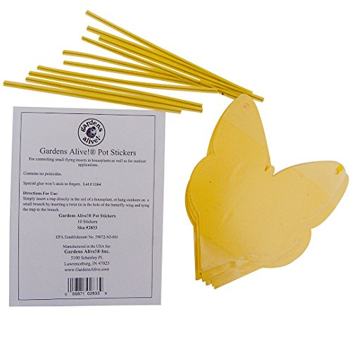 Gardens Alive Pot Stickers for Small Flying Insects Pkg of 10
