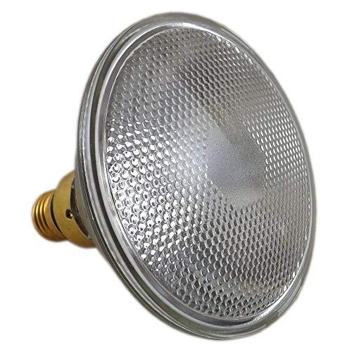 PAR38 Reflektorlampe 80w E27 ES Klar Flood 240v (TLC LAPAR80)