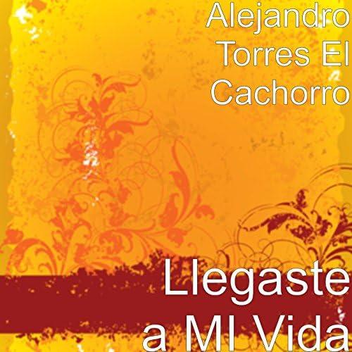 Alejandro Torres El Cachorro