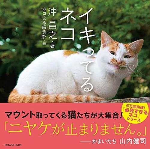 イキってるネコ (タツミムック)