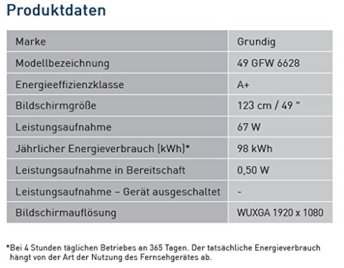 Grundig 49 GFW 6628 124 cm (49 Zoll) Fernseher (Full-HD, Triple Tuner, Smart TV)