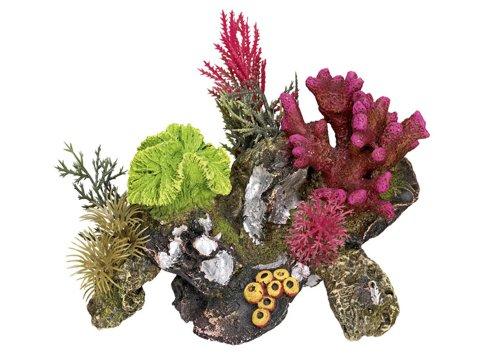 Nobby Aqua Ornaments