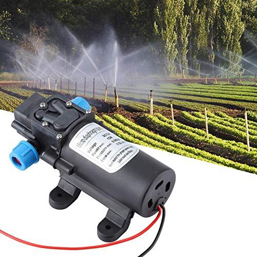 Membraanpomp, 12V 15W mini elektrische waterpomp 35m slagterugloop type micro membraanpomp 1.0m zuigkracht