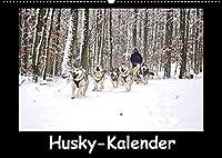 Husky-Kalender (Wandkalender 2022 DIN A2 quer): Sibirische Huskies (Monatskalender, 14 Seiten )