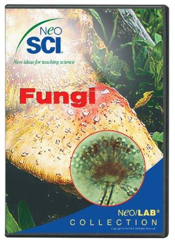 Neo//SCI Fungi Neo//LAB Software Network License