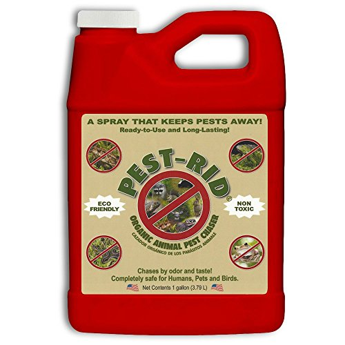 Pest Rid Ready to Use Pest Control Refill Pack, 1-Gallon