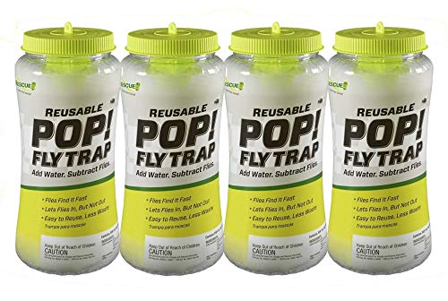 RESCUE! POP! Reusable Fly Trap with Fast-Acting Water-Soluble Attractant for Home & Agricultural Settings, Durable Recyclable Plastic (Pack of 4)