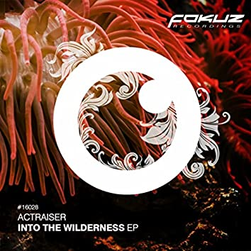 Into The Wilderness EP
