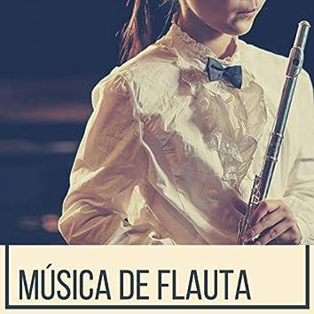 Música de Flauta: Música de Fondo Relajante para Trabajar, Estudiar, Leer y Meditar