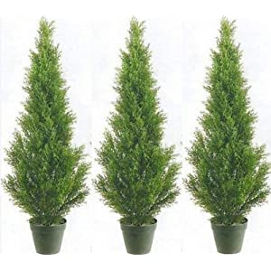 Silk Tree Warehouse Company Inc One 4 Foot Artificial Boxwood Cone Tower Topiary Trees Potted Outdoor UV Rated