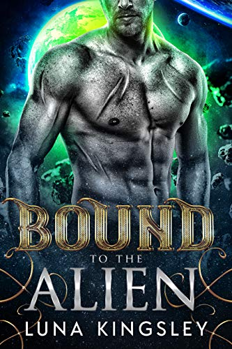 Bound to the Alien (An Alien Abduction Romance) (Roh'ilian Warrior Series Book 2)