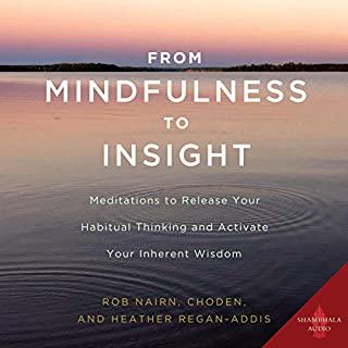 From Mindfulness to Insight audiobook cover art
