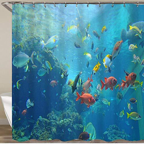VORMOR Duschvorhang 180x180cm Wasserabweisend Shower Curtain,Bunter tropischer Fisch in einem Aquarium in Okinawa Island