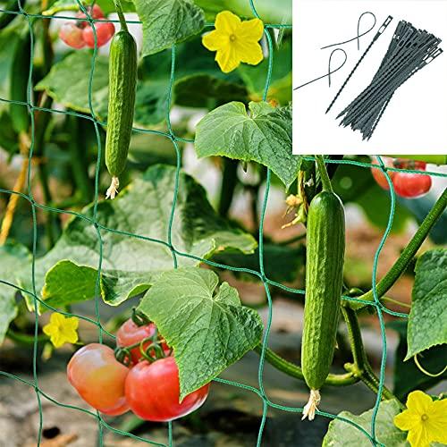 Premium Ranknetz 1,8*2,7M mit großer Maschenweite für den perfekten Wachstum von Tomaten, Gurken und Kletterpflanzen Das Optimale Rankhilfe Netz für Garten und Gewächshaus(mit 50 Kabelbinder )