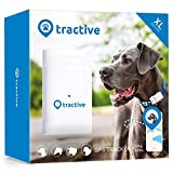 Tractive GPS Tracker XL for Dogs - Location Tracker with 6 Week Battery and Unlimited Range White