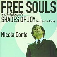 Free Souls/Shades of Joy [7 inch Analog]