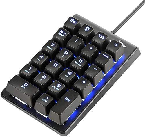 Rottay Ziffernblock, Mechanische Numerische Tastatur mit Kabel RGB LED Blau Beleuchtet Mechanische Nummernblock 22 Tasten Blue Switches für PC, Laptop, Notebook