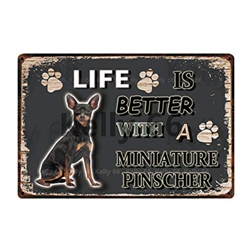 ivAZW Tin Metal Sign Pet Home Decor Bar Wall Art Painting 20x30cm y-3708