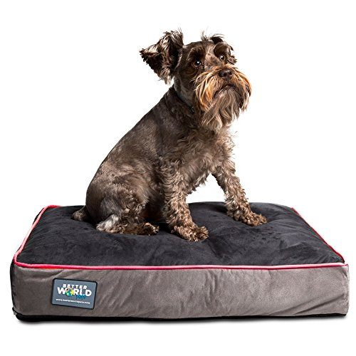 Better World Pets 5-inch Thick Orthopedic Dog Bed