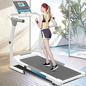 Weslo Cadence 21,0, Modelo watl497100, cinta de correr caminar ...