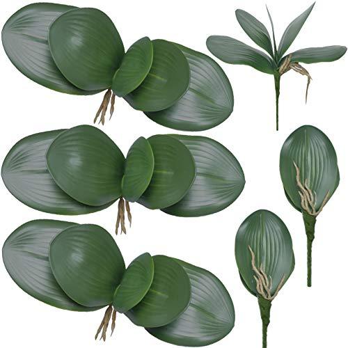 FagusHome 6 Stück Künstliche Orchidee Blätter 26cm Künstliche Phalaenopsis Blätter Kunstpflanzen Grün Deko Blätter (6Pcs)