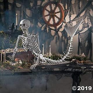 Best real mermaid skeleton Reviews