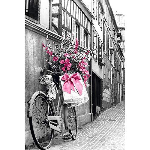 DIY 5D Kit de Pintura de Diamante,Bicicleta y flor Kits de pintura de punto de cruz diamante para Adultos y niños rhinestone bordado diamante arte,regalo de decoración del hogar 40x50cm