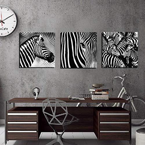 MMLFY 3 Leinwandbilder 40X40CM3PCS KEIN Rahmen Leinwand HD Drucke Gemälde 3 Stücke Zebras Tier Poster Wandkunst Schwarz Weiß Bilder Modulare Wohnzimmer Arbeit Wohnkultur