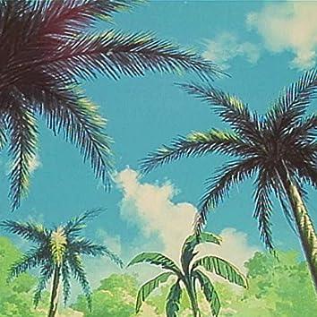 Palm Festival Funk