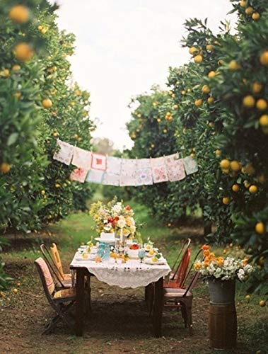 wangxiuliu DIY Malen Nach Zahlen Ölgemälde Vorgedruckt Leinwand Geschenk für Erwachsene Kinder Home Haus Dekor Picknick im Obstgarten 40x50cm