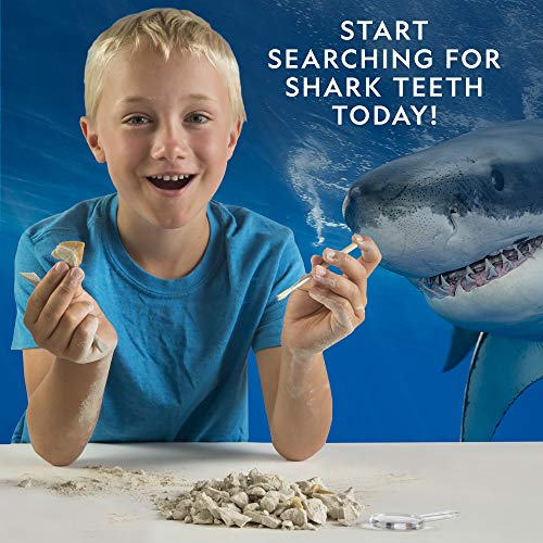 Product Image 3: National Geographic Shark Tooth Dig Kit, Excavate 3 Real Shark Fossils Including Sand Tiger, Otodus and Crow Shark – Great Science Gift for Marine Biology Enthusiasts of Any Age