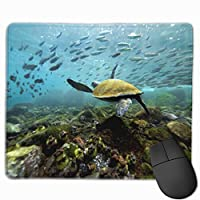 カメ 熱帯雨林 エクアドル マウスパッド 運びやすい オフィス 家 最適 おしゃれ 耐久性 滑り止めゴム底付き 快適操作性 30*25*0.3cm