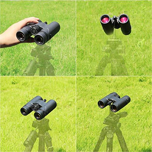 SVBONYSV202双眼鏡高倍率8x32IPX7防水ED双眼鏡バードウォッチングガラスメガネ対応BaK4プリズム星空観察用防振双眼鏡