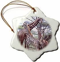 83928_1 Giraffe Herd Tanzania Africa David Northcott Snowflake Decorative Hanging Ornament, Porcelain, 3-Inch