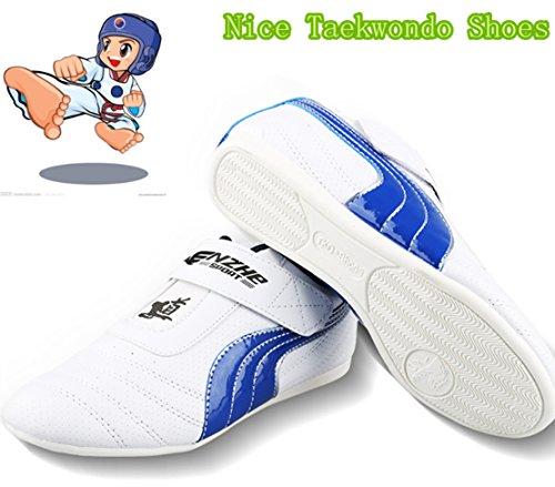 B.E.S.T Unisex Taekwondo Shoes Kung Fu Karate Tai Chi Martial Arts Shoes TKD Boxing Shoes Children Taekwond Trainning Shoes(Size Chart in Last Photo) (32, BKD-3)