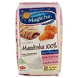 le Farine Magiche Manitoba Farina - 1 kg...
