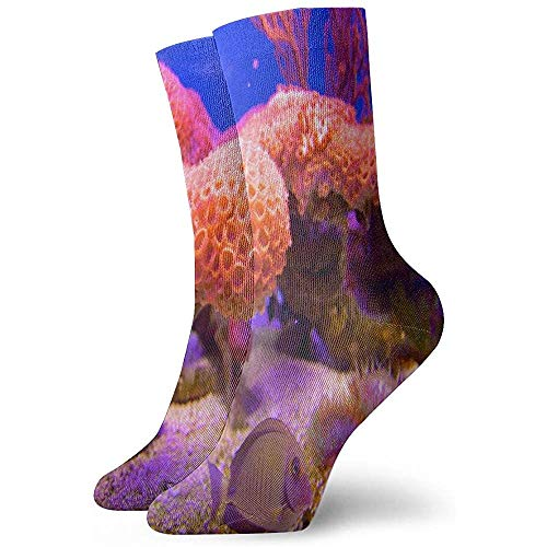 Gre Rry Crew Socks Coral Reef Funny Athletic Sock Stylish Anti Odor Cushion Short Boot Stocking
