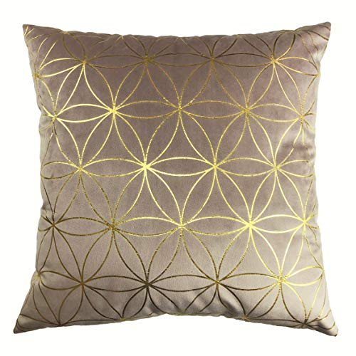 LILYAN GOLD Pattern Velvet Soft Decorative Throw Cushion Cover with Concealed Zip, 45cm x 45cm (Pink)