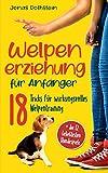 """Welpenerziehung für Anfänger: Der fantastische Hunderatgeber. 18 Tricks für wirkungsvolles Welpentraining, mit denen """"Bello"""" zum vorbildlichen Junghund wird (Inkl. der 12 beliebtesten Hundespiele)"""