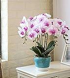 Marjon Flores Mariposa Orquídea Estilo Europeo Set Artificial Flores Mobiliario Decoración Salón Potted Plantas Rosa