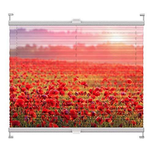 Plissee mit Motiv 6002 nach Maß Schrauben in Glasleisten Klemmen auf Fensterrahmen Digitaldruck Sichtschutz lichtdurchlässig fest verspanntes Jalousie Rollo Fenster innen Breite 75-99 Höhe 101-124 cm