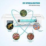 Zoom IMG-2 meco portaspazzolino uv sterilizzatore spazzolini