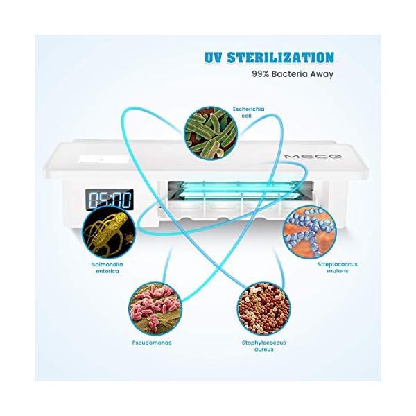 MECO ELEVERDE Portacepillos de Dientes Soporte de Dientes de UV Esterilizador