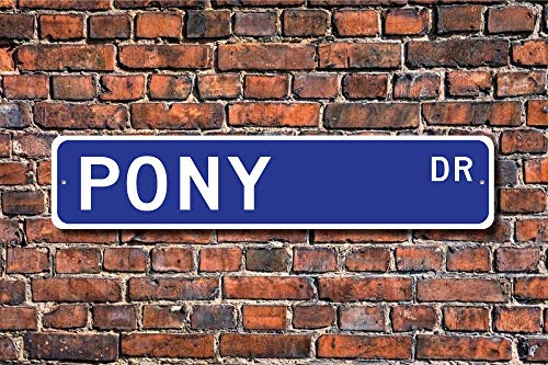 CHI Funny Metall Schilder Pony Schild Decor Pony Lover Klein Pferd Ranch Animal Farm Animal Garage Home Yard Zaun Auffahrt Street Decor