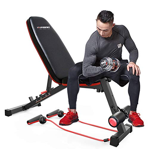 HARISON Adjustable Weight Bench Exercise Workout Bench for Full Body Workout Home Gym Strength Training Multi-Purpose Folding Flat Incline Decline Bench 550 LBS (HR-608)