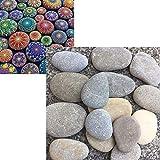 MSCOCO Piedras planas para pintar y jardín, piedras decorativas de mármol, piedras naturales para decoración de jardín, piedras decorativas para acuarios, color blanco, tamaño 3-5 cm