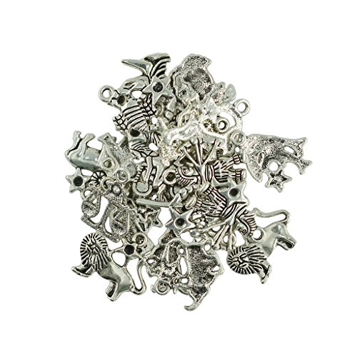 Colcolo 24PCs Birth Sign Zodiac Constellations Charms Tibetan Silver Making Findings