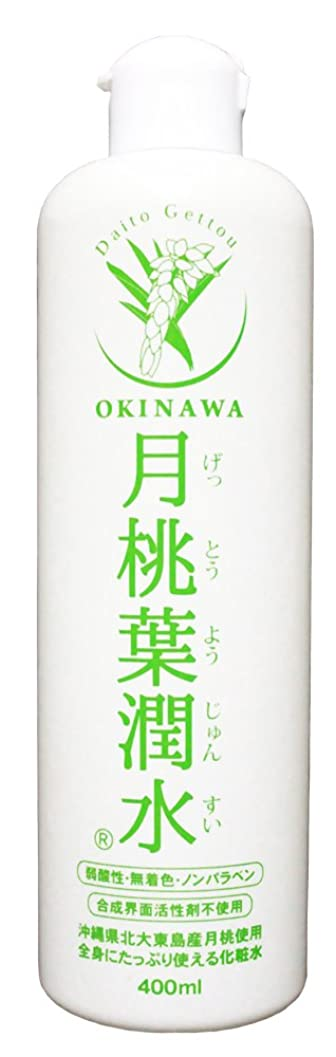 消去みすぼらしいピン化粧水 月桃葉潤水 400ml 1本